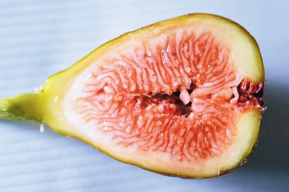 A cross-section of a fig