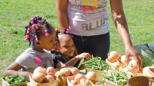 Children picking out vegetables